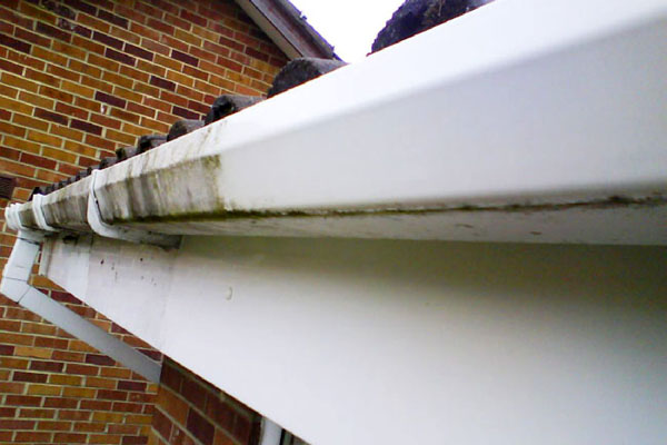 Fascia and gutter cleaning